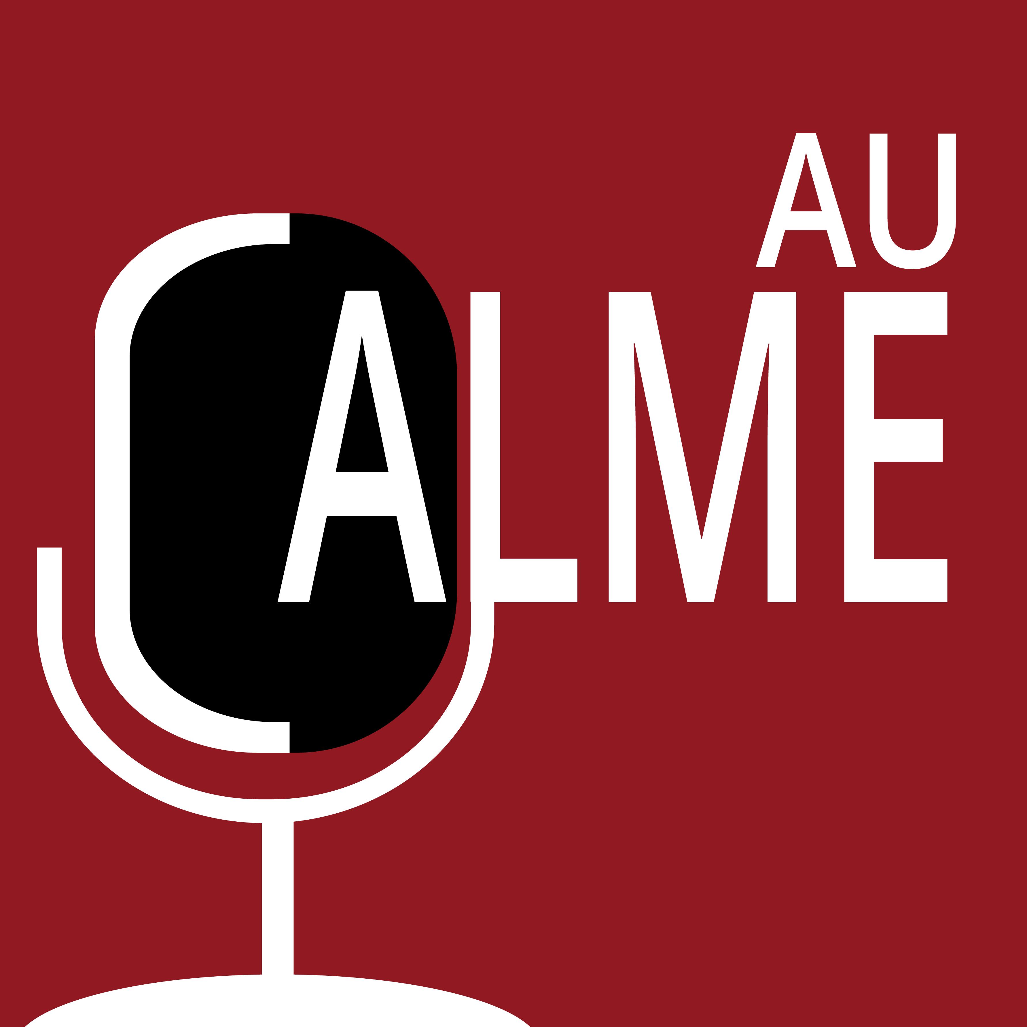 Les magistériens «Au Calme» – Episode 6 : Les nouveaux formats médiatiques avec Grégoire Cherubini